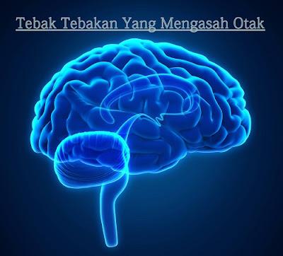 tebak tebakan mengasah otak