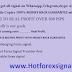Best Forex Trade Copier with Forex signals