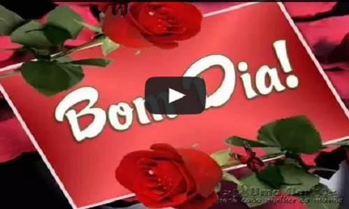 Uma Flor De Bom Dia: Uma Flor Para Cada Mulher Do Mundo : Mensagem De Bom Dia