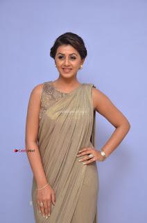 Nikki Galrani in Saree 076.JPG