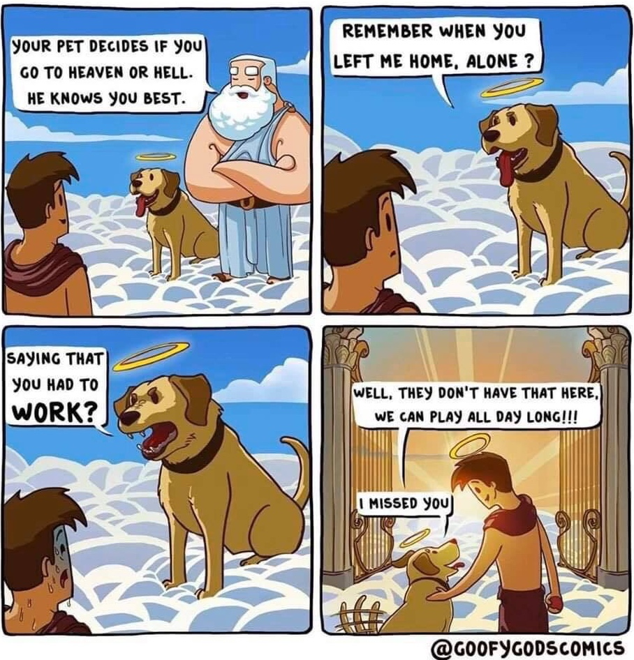 Dogs are the best people