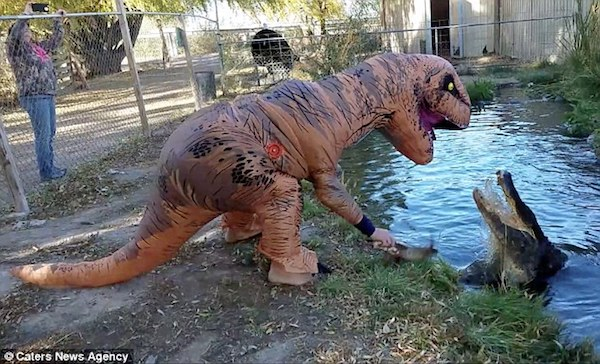 10 hilarious dinosaurs doing everyday things teroes