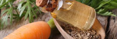L'huile de carotte pour les cheveux secs