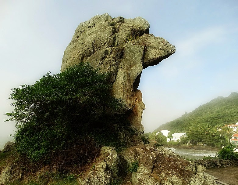 Bico do Papagaio, na Praia do Geremias, Itajaí