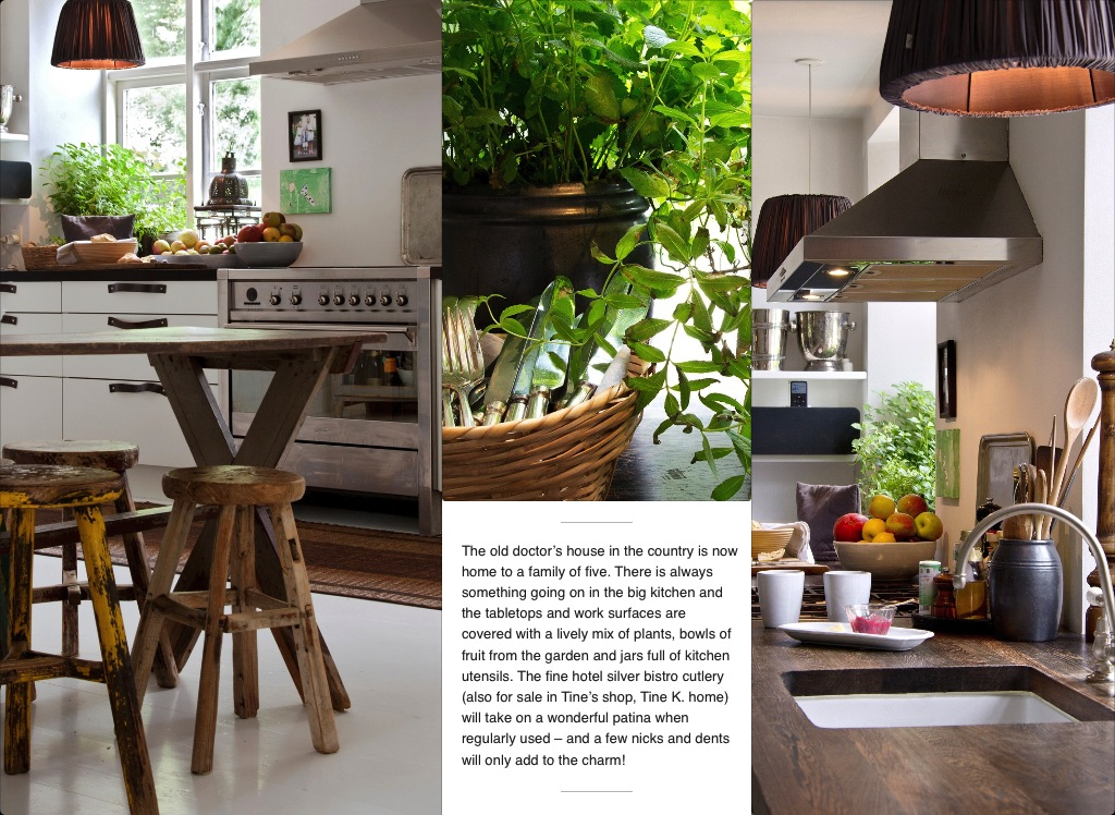 My Scandinavian Home Fab Nordic Interior Decorating Book