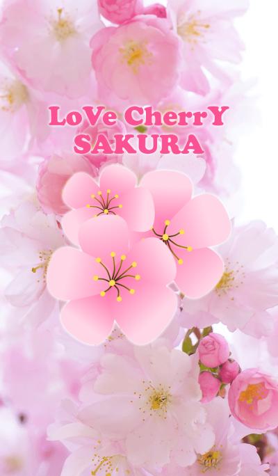 Love Cherry Sakura