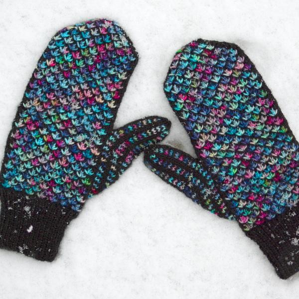 cozy birdhouse | fiesta mittens