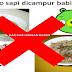 JAHIL BAHLUL! Bulan Puasa Malah Jualan Bakso Oplosan Daging Babi! Untung Ditangkap Polisi