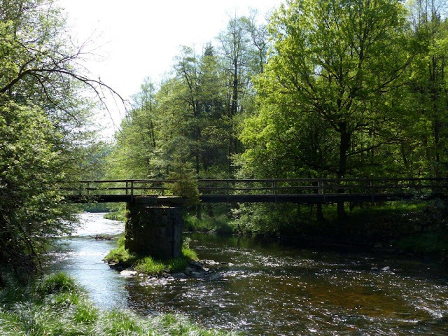 Ilz Wanderung Schrottenbachmühle Fürsteneck wandern Hund Fluß Ilztal Bayern
