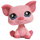 Littlest Pet Shop Tubes Pig (#876) Pet