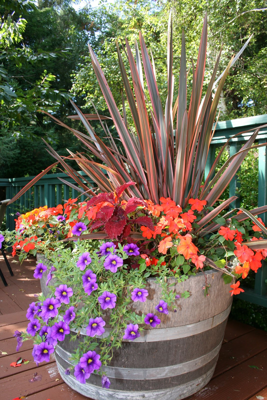 Container Garden Tips | kinds of ornamental plants on Tree Planting Ideas For Backyard id=81829