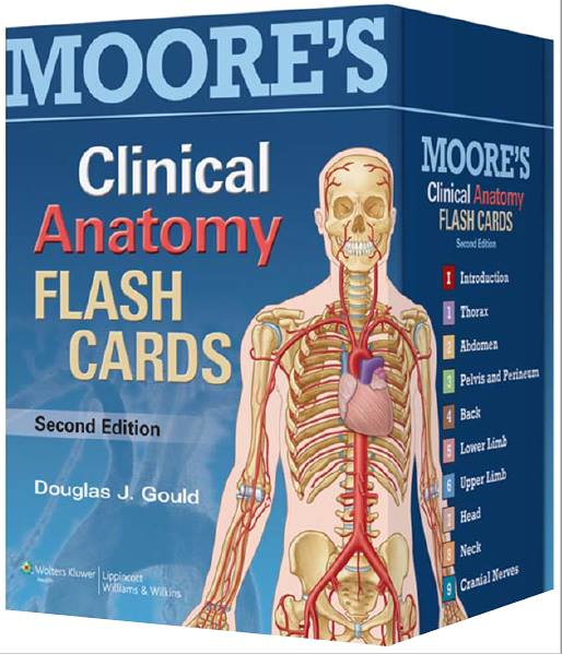 Moores Clinical Anatomy Flash Cards Medical Materials