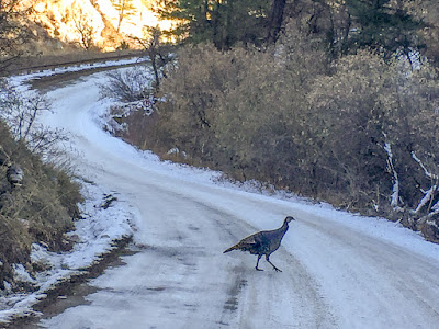 Uraling to Castlewood Canyon State Park