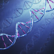 New record for DNA digital storage
