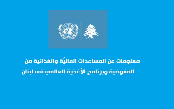 معلومات عن المساعدات الماليّة والغذائية من المفوضية وبرنامج الأغذية العالمي فى لبنان