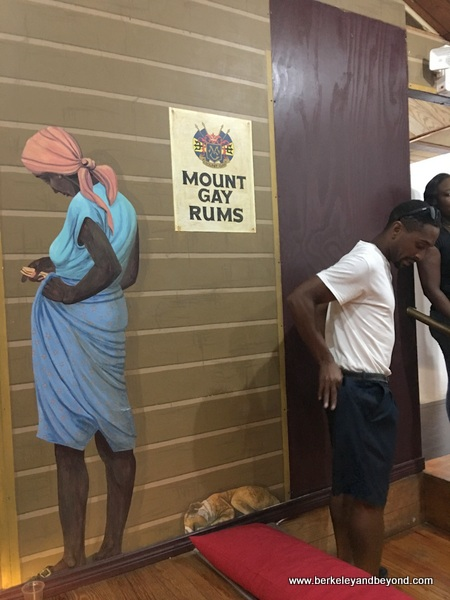 life imitates art at Mount Gay Rum Visitor Experience on Barbados