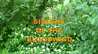 Bk. 1- SISTERS OF THE BLOODWIND site