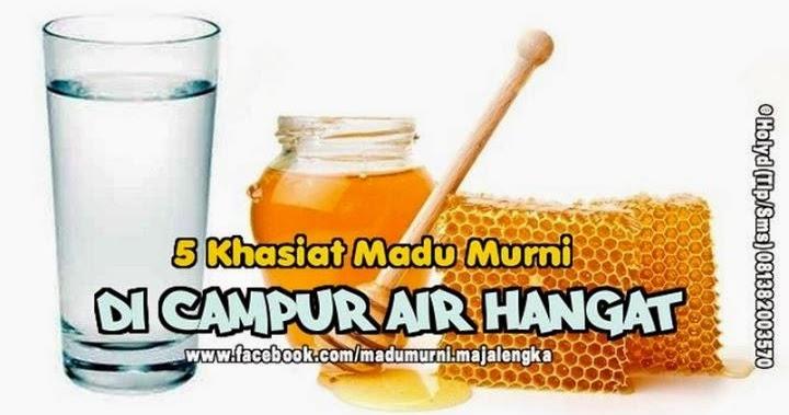 38 Manfaat Madu Dicampur Air Hangat Png Content