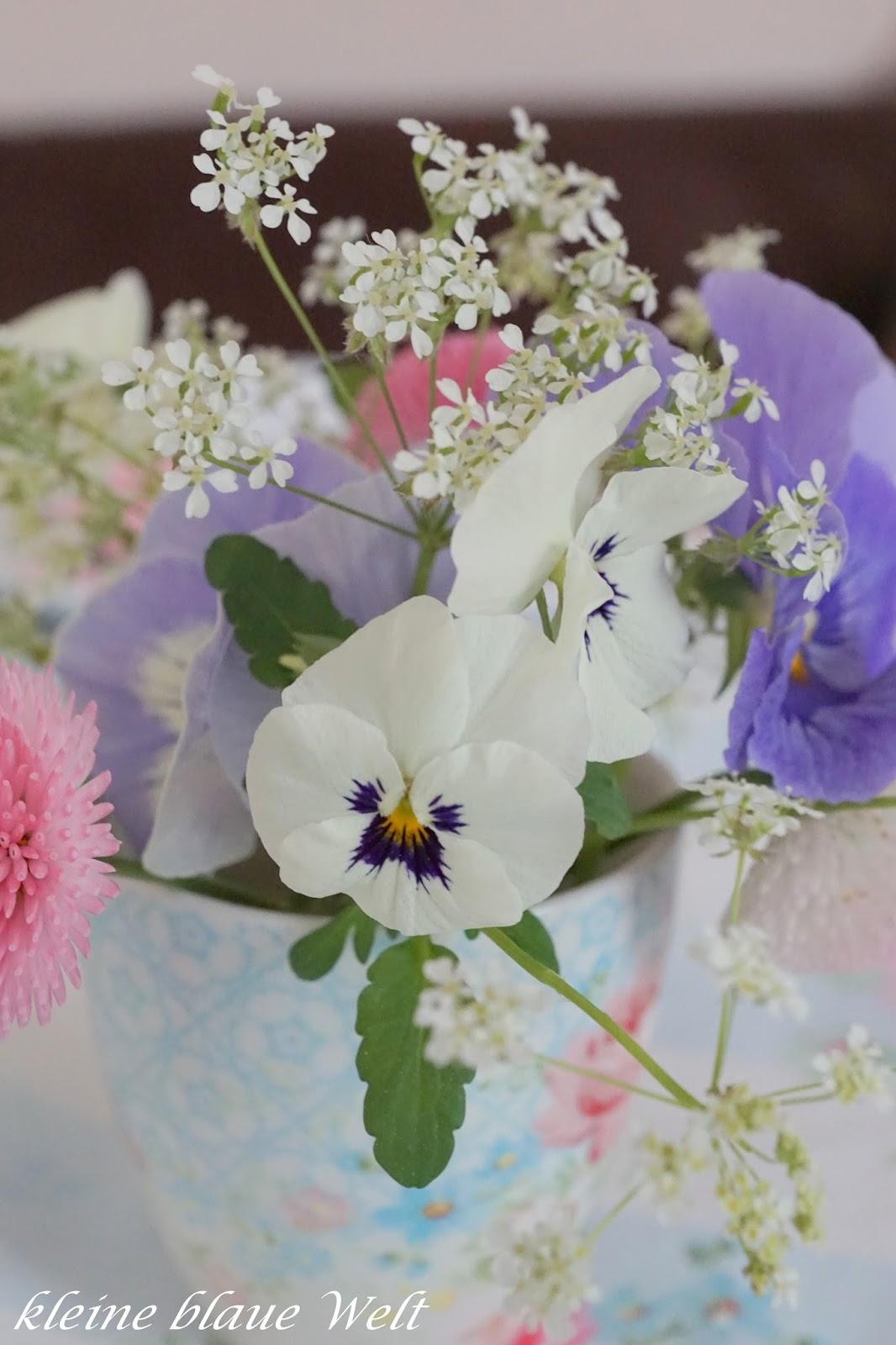 kleine blaue welt friday flowerday 21 17. Black Bedroom Furniture Sets. Home Design Ideas