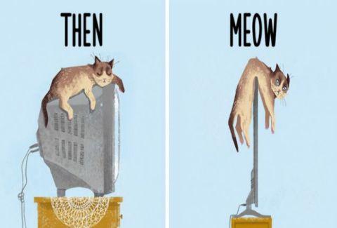 Κι όμως: Δείτε πόσο έχει επηρεάσει η τεχνολογία, τη ζωή της… γάτας σας! (PHOTOS)