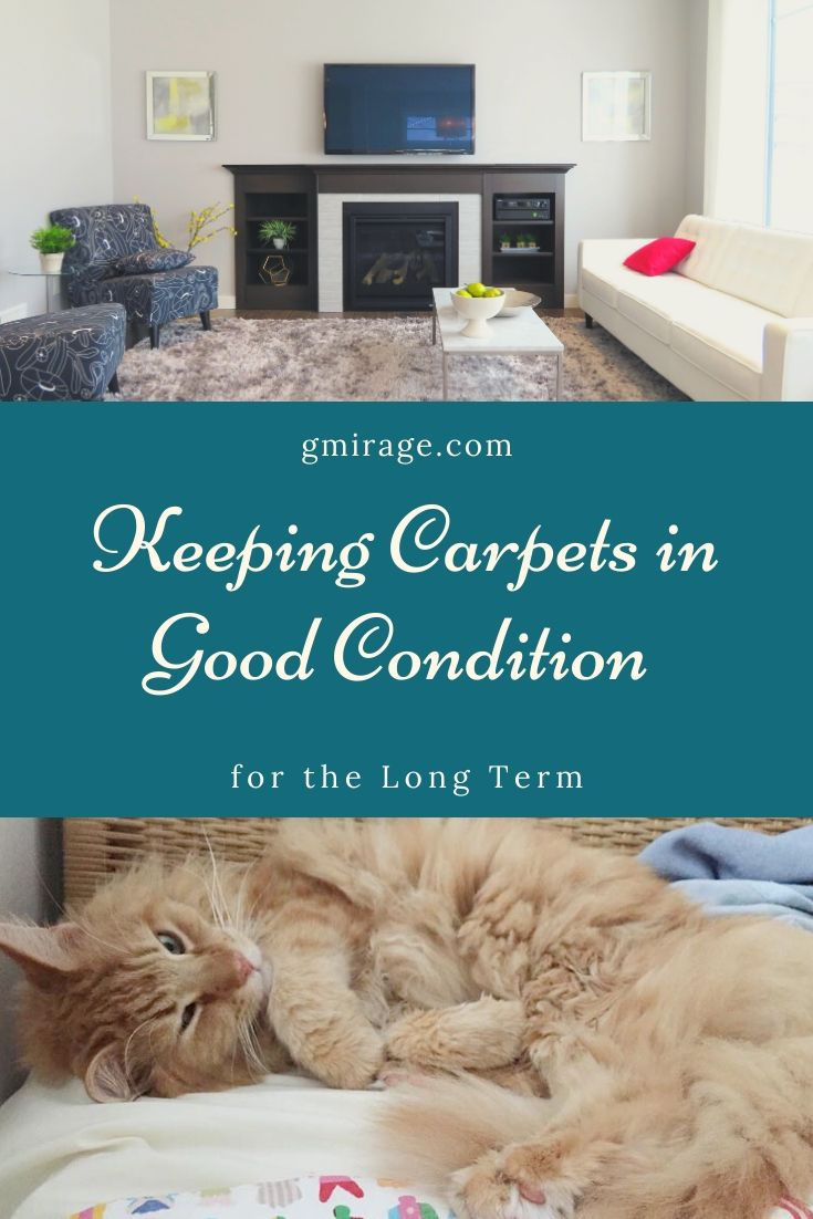 Keeping Carpets in Good Condition for the Long Term