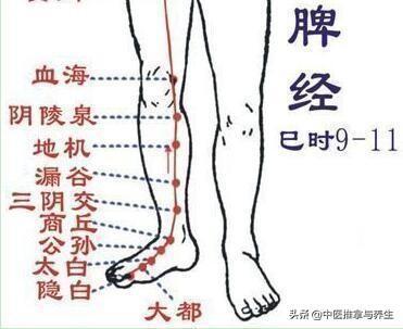 不要忽視了小腿的健康, 否則吃大虧!(小腿按摩)