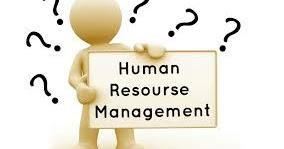 sample assignment human resource management