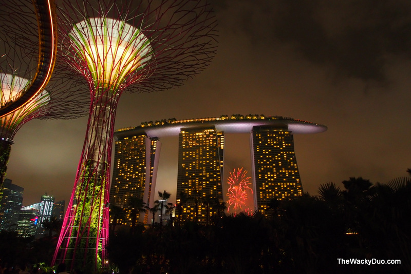 Ordinaire Fireworks From Gardens By The Bay