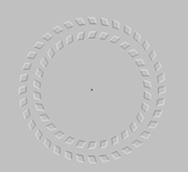 حلقات دائرية