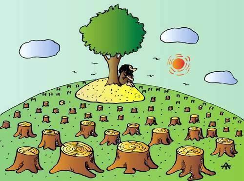 ada ağaç karikatür