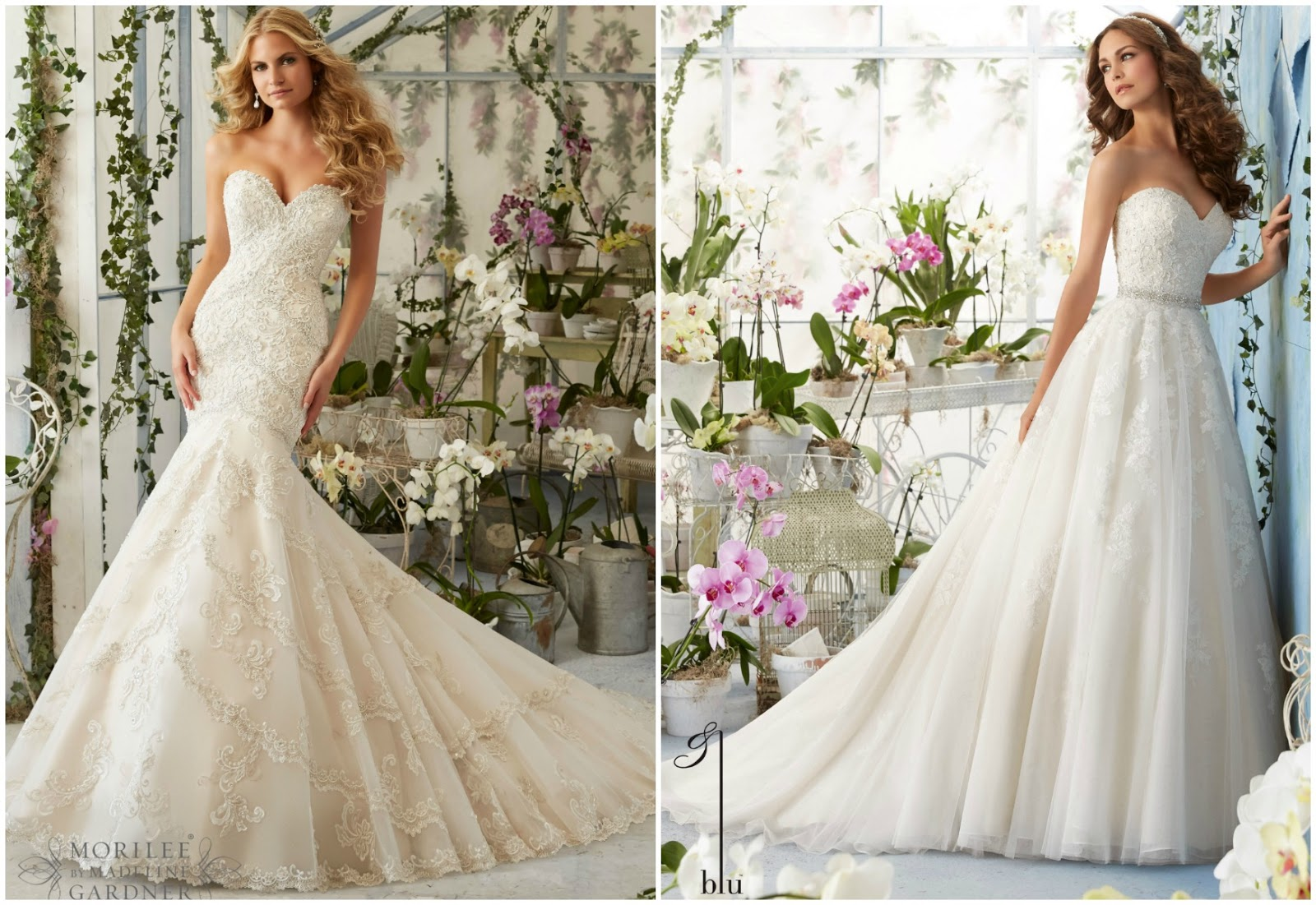 Brides of america online store appointments available for for Wedding dresses miami stores
