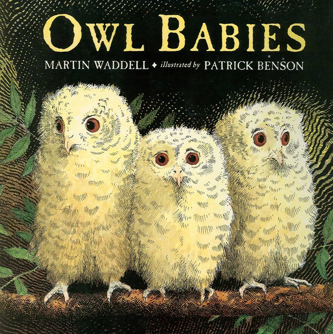 Owl Babies Unit Study