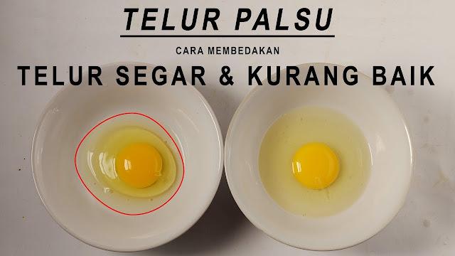 Peredaran Telur Palsu Hebohkan Tanah Air, Ini Kata BPOM