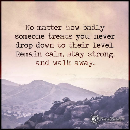 No Matter How Badly Someone Treats You Never Drop Down To Their