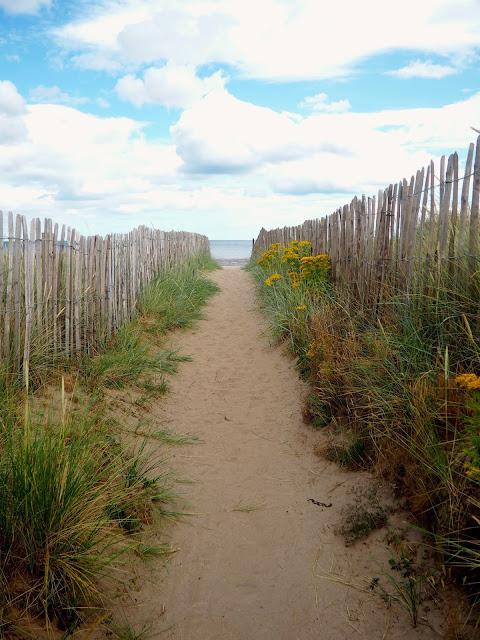 West Sands, St Andrews, Fife, Scotland