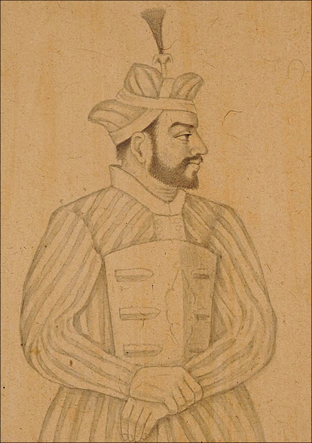 Zafar Khan, Ala-ud-din's general