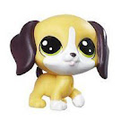 Littlest Pet Shop Beagley Pupton Generation 5.5 Pets Pets