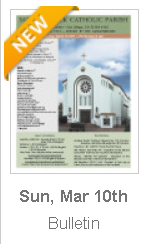 https://www.parishesonline.com/find/pastor-of-saint-patrick-catholic-parish-san-diego-california-corporation-sole/bulletin/file/05-0628-20190310B.pdf#