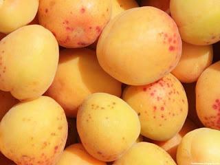 Aprium fruit images wallpaper