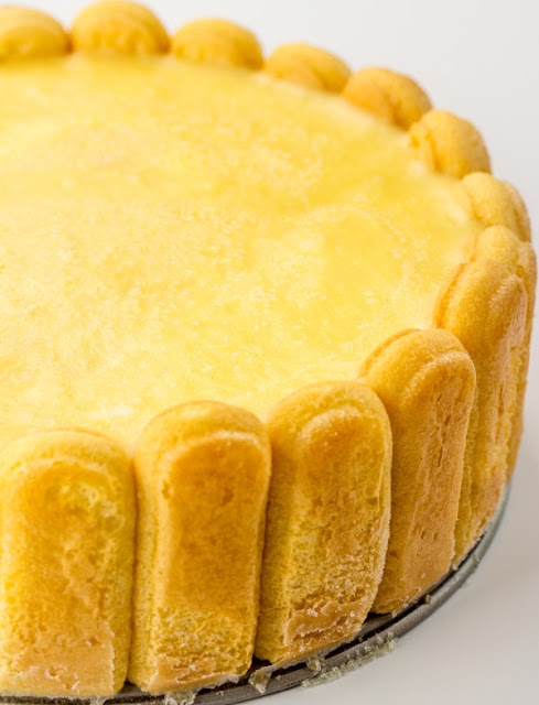 cheesecake rimmed with lady finger crust and orange pudding on top