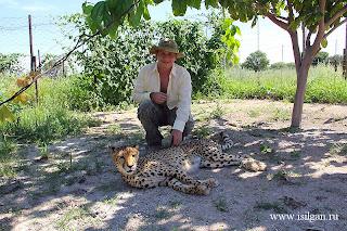 Ферма гепардов. Намибия. isilgan