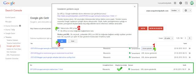 google arama motoru hızlı index url gönderme