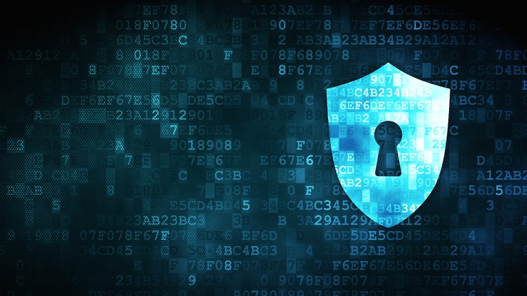 Ecommerce Store Security and Customer Frauds