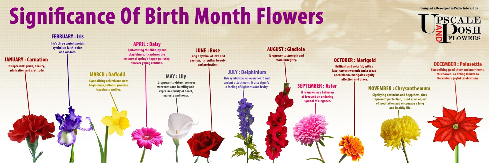 each month encompasses a flower that symbolizes the month of somebody ...