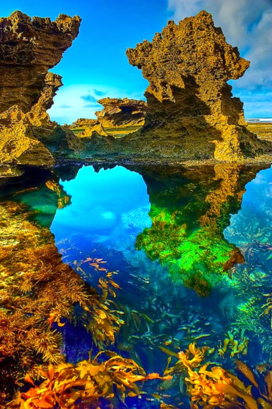 Sorrento Beach, Australia  | Australia the perfect land photography lovers
