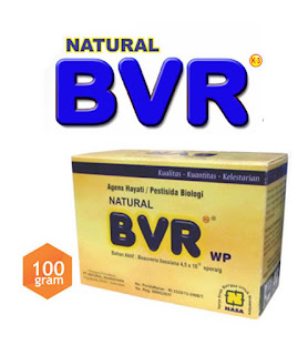 Natural BVR Pengendali Hama Tanaman