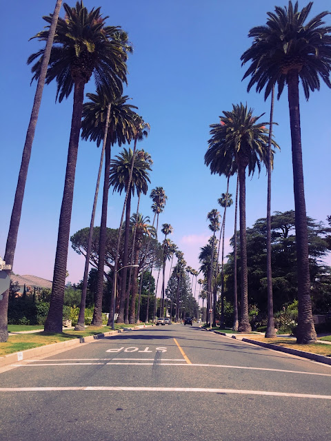 beverly_hills_windsor_blvd_los_angeles