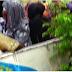 Boko Haram Didn't Abduct Policewomen – Police Force Debunks Report.
