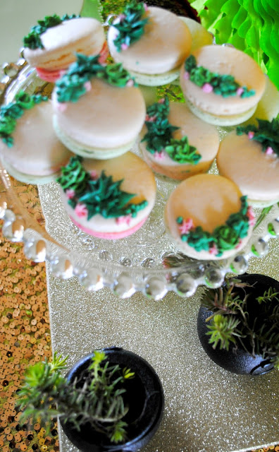 Succulent macarons at Fizzy Party's succulent workshop