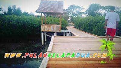 Joka Landro Hutan Mangrove Pulau Kelapa Dua